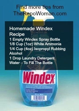 Homemade Windex !